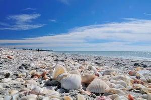 Bowmans Beach.jpg
