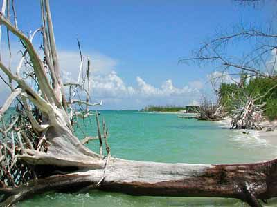 Lovers Key State Park.jpg