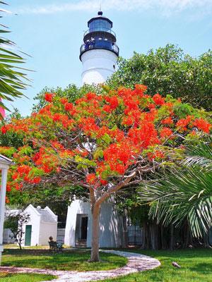 Key_West_Lighthouse_20080728