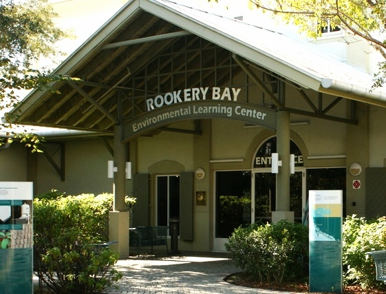 ROOKERY_bay_learning_center-601518-edited.jpg