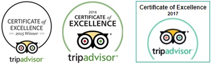 Trip Advisor Collage.jpg