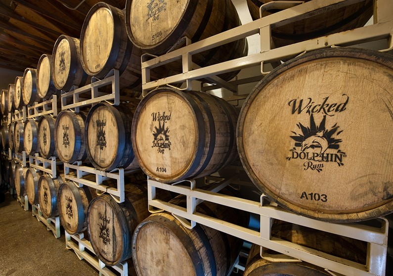 Wicked Dolphin Barrel Room