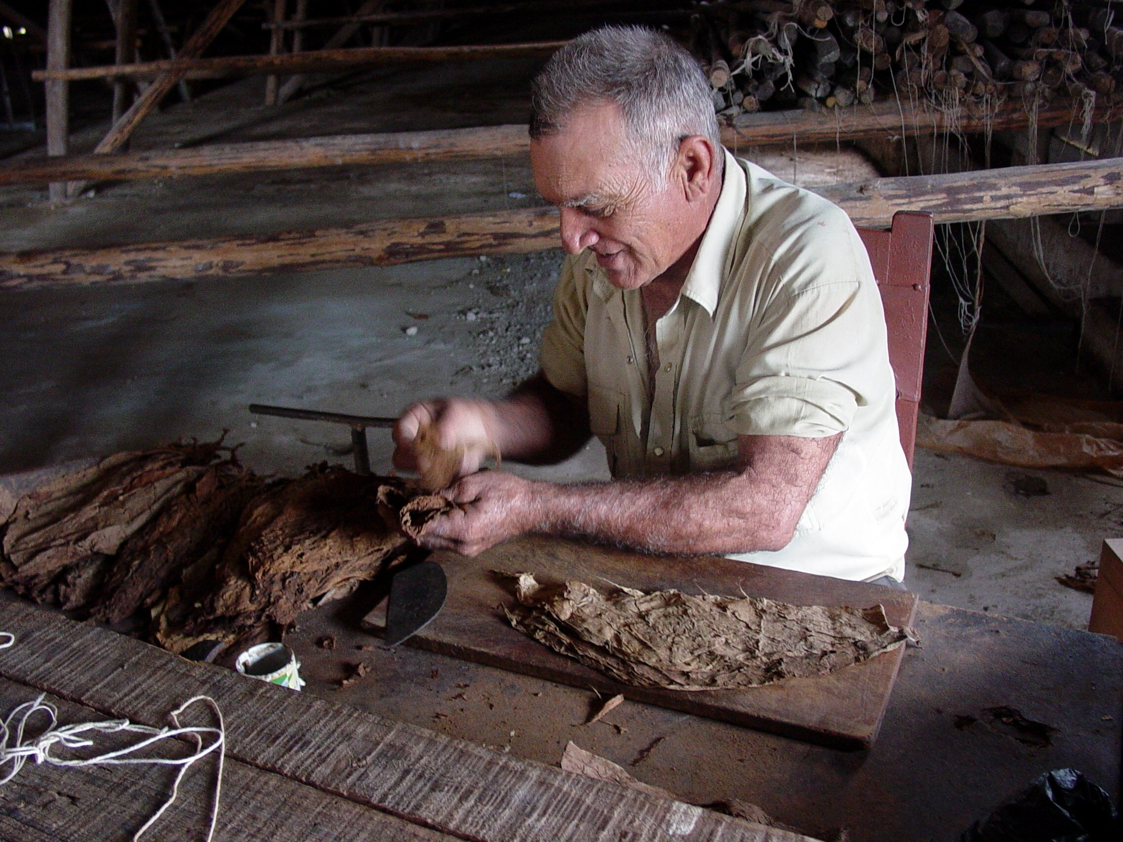 Hand rolling cigars in Cuba